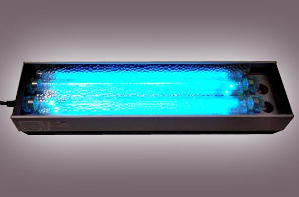 Vasca termostatata a circolazione di acqua refrigerata per esposizione e conservazione dei fiori recisi